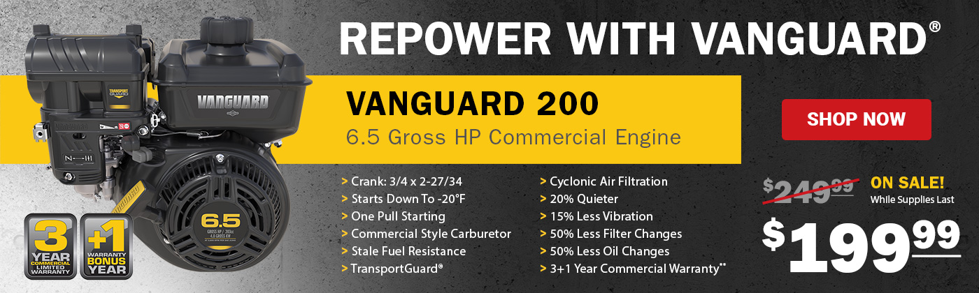 Vanguard 200 Engine Sale