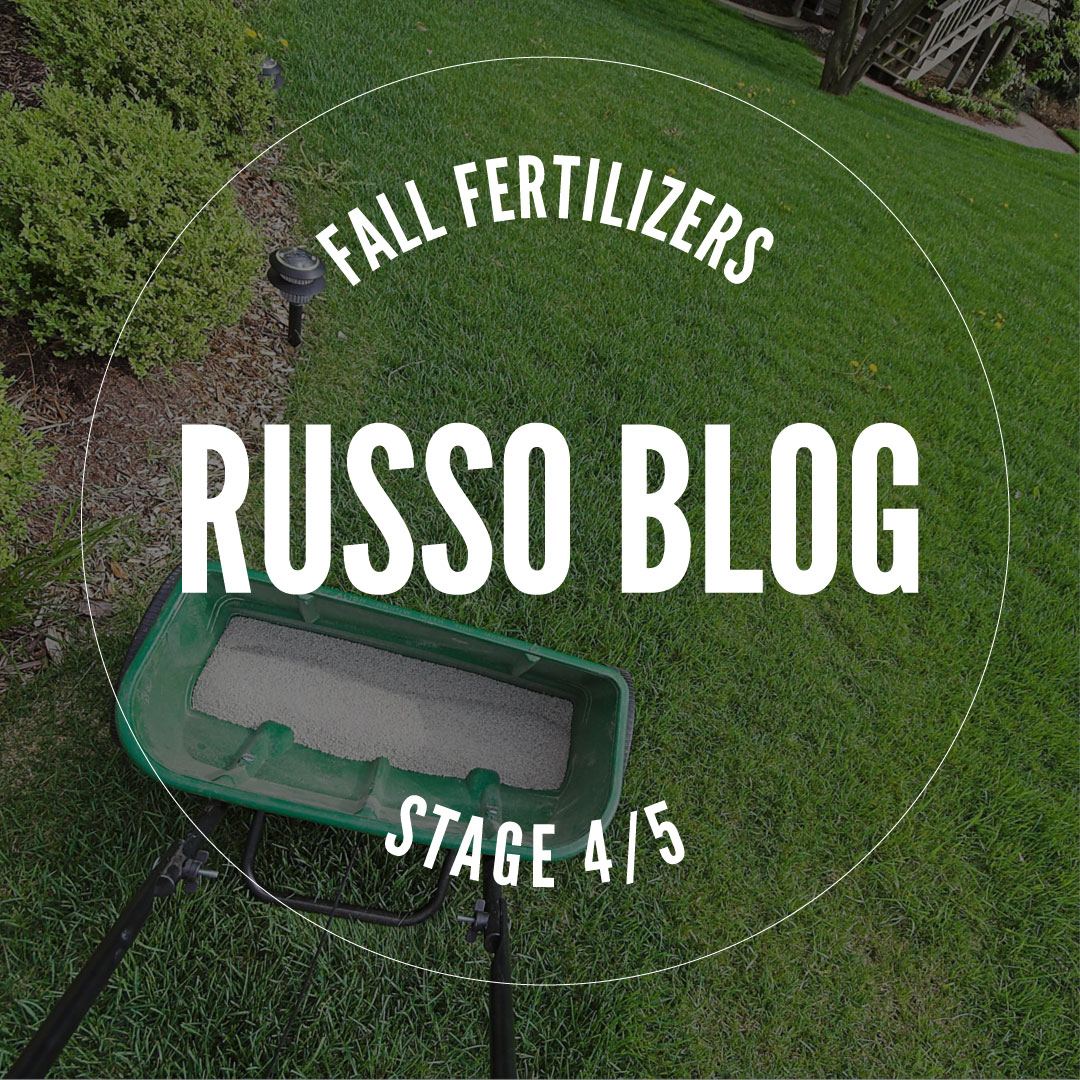 Now's the time for Fall Fertilizer