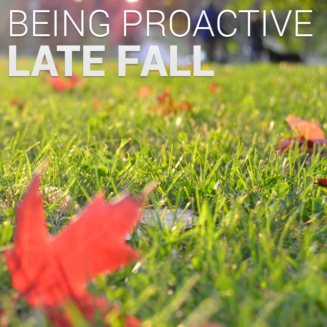 Tips on Late Fall Applications